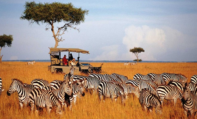 Apply for your kenya Visa with Leben Travels And Tours